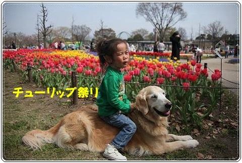 ブログFILE0253.CHK-s-20161231こぴ.jpg