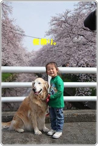ブログFILE0276.CHK-s-20161231こぴ.jpg