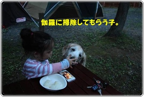 ブログFILE0921.CHK-s-20161231こぴ.jpg