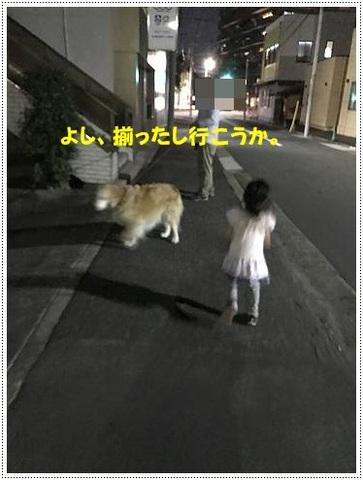 ブログIMG_1003-s-20170629こぴ.JPG