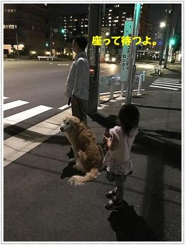 ブログIMG_1005-s-20170629こぴ.JPG