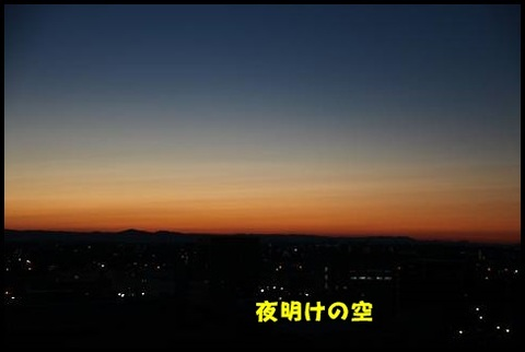 ブログIMG_1088-s-20170228こぴ.JPG