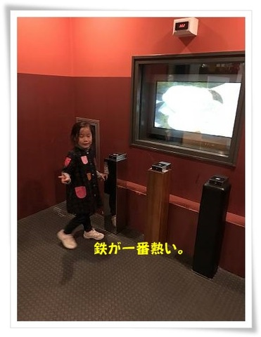 ブログIMG_1555-s-20171202こぴ.JPG