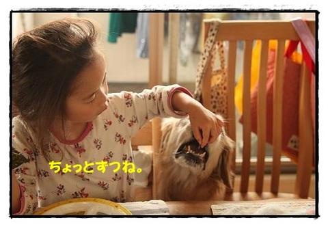 ブログIMG_3535-s-20170630こぴ.JPG