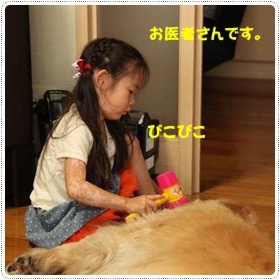 ブログIMG_3588-s-20170628こぴ.JPG