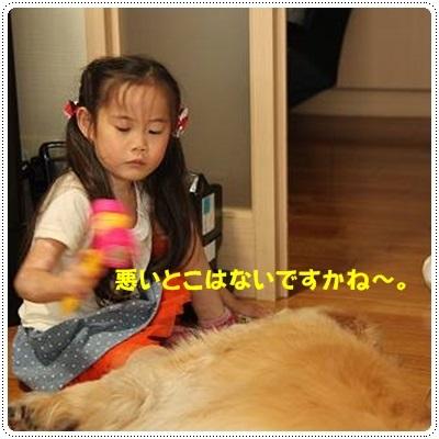 ブログIMG_3590-s-20170628こぴ.JPG