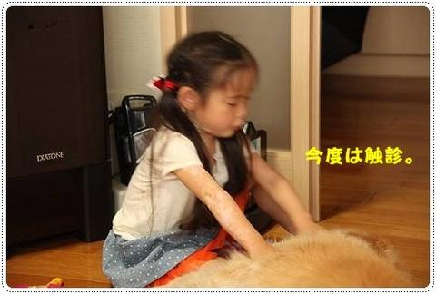 ブログIMG_3592-s-20170628こぴ.JPG