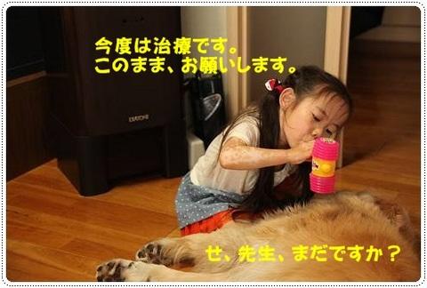 ブログIMG_3610-s-20170628こぴ.JPG