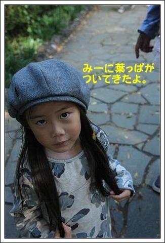 ブログIMG_4497-s-20171117こぴ.JPG