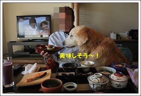 ブログIMG_4532-s-20171123こぴ.JPG