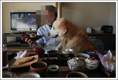 ブログIMG_4534-s-20171123こぴ.JPG