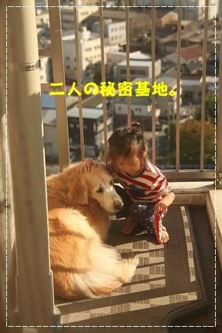 ブログIMG_5340-s-20151024こぴ.JPG