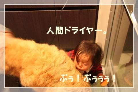 ブログIMG_5834-s-20140302こぴ.JPG