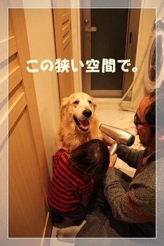 ブログIMG_5841-s-20140302こぴ.JPG