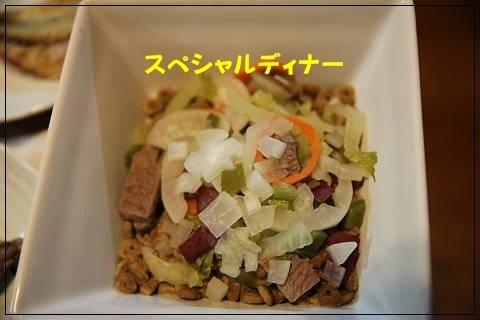 ブログIMG_6066-s-20151109こぴ.JPG