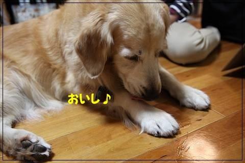 ブログIMG_6167-s-20151109こぴ.JPG