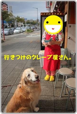 ブログIMG_9245-s-20161231こぴ.JPG