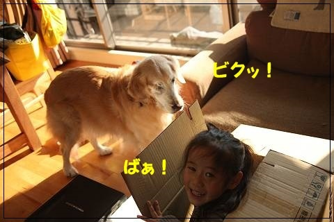 ブログIMG_9926-s-20170129こぴ.JPG