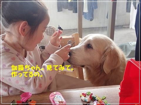 ブログP2250015-s-20180301こぴ.JPG
