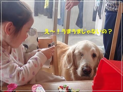 ブログP2250016-s-20180301こぴ.JPG