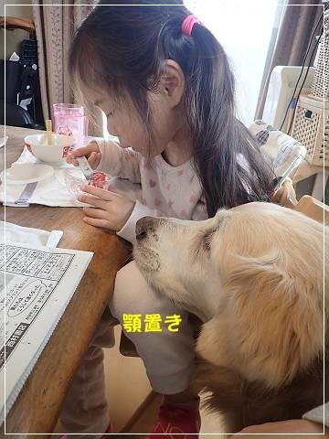 ブログP2250023-s-20180225こぴ.JPG