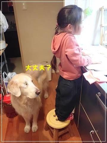 ブログP2250045-s-20180226こぴ.JPG