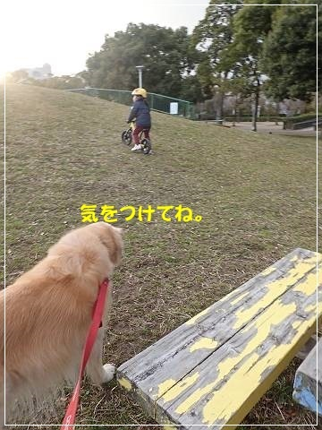 ブログP3010007-s-20180302こぴ.JPG