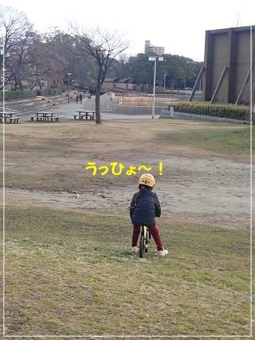 ブログP3010016-s-20180302こぴ.JPG