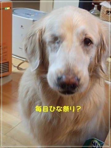 ブログP3030067-s-20180304こぴ.JPG