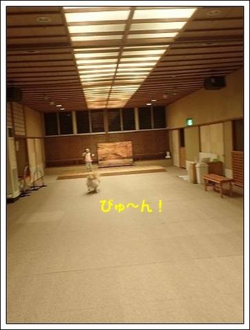 ブログPB040069-s-20171122こぴ.JPG