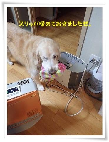 ブログPC010032-s-20171202こぴ.JPG