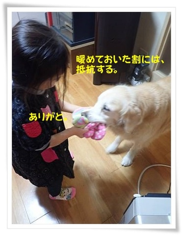 ブログPC010035-s-20171202こぴ.JPG