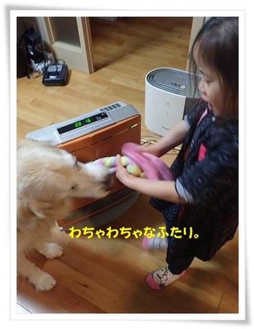 ブログPC010047-s-20171202こぴ.JPG
