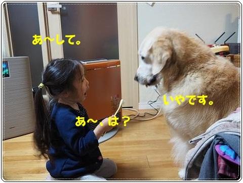 ブログPC210060-s-20161231こぴ.JPG