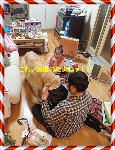 ブログPC240096-s-20171228こぴ.JPG