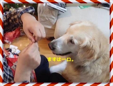 ブログPC240115-s-20171228こぴ.JPG