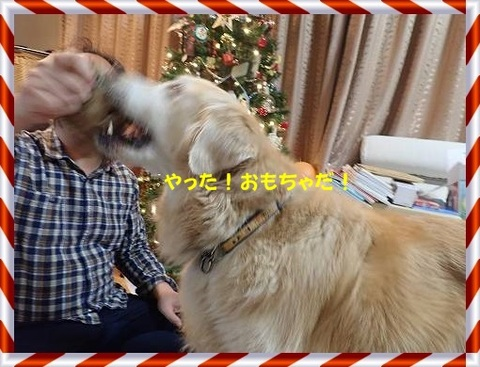 ブログPC240137-s-20171228こぴ.JPG